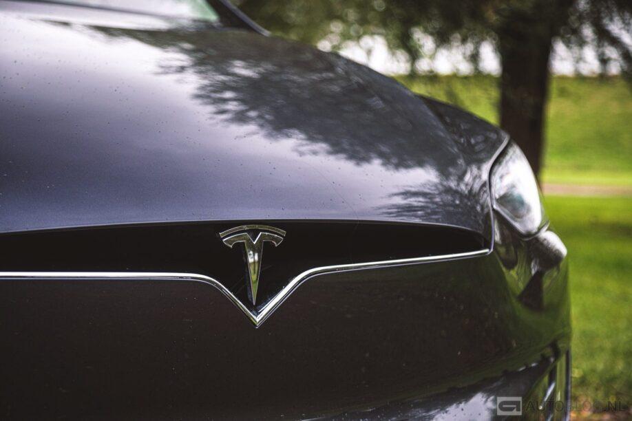 Neus van een Tesla Model X