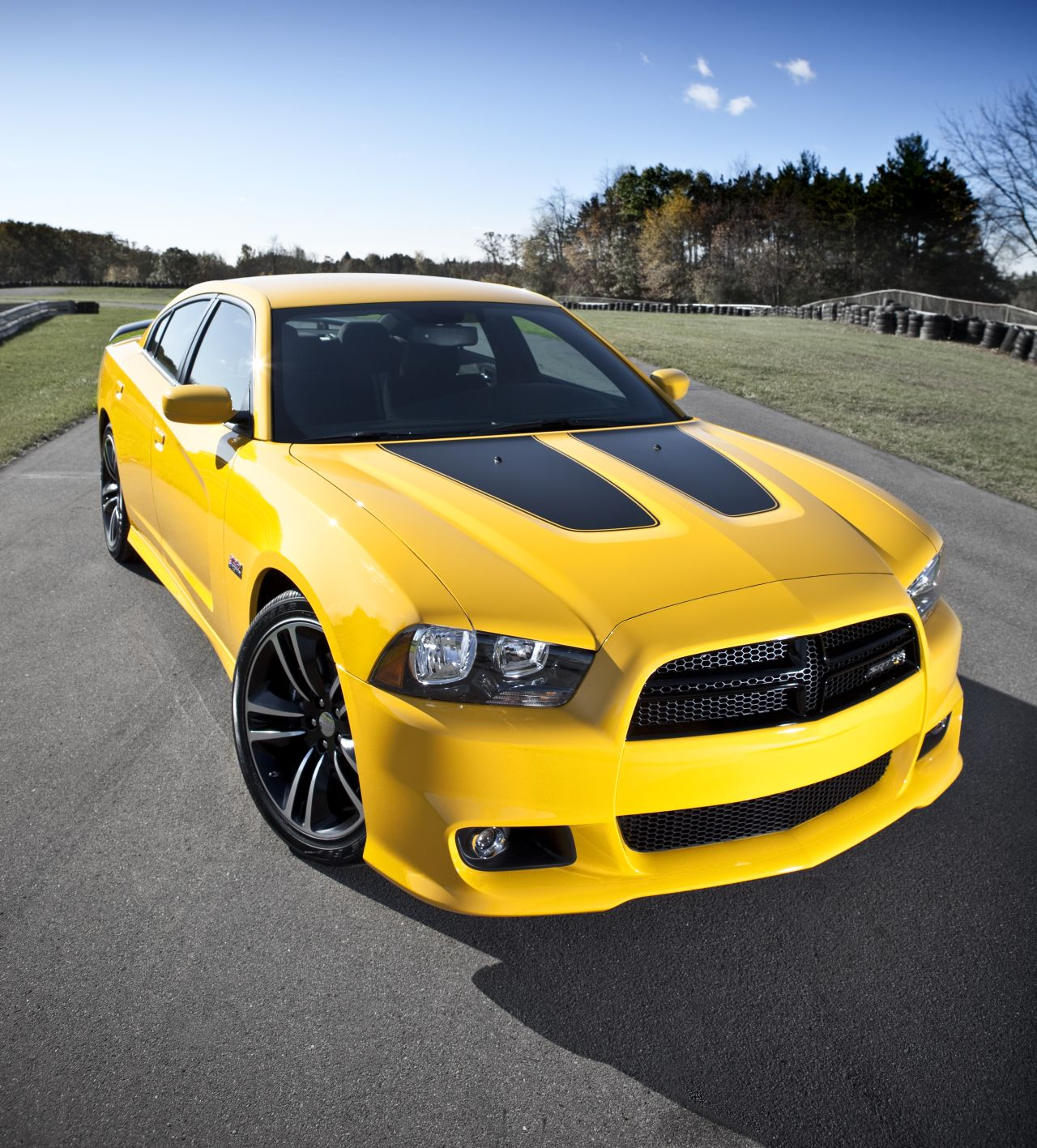 dodge challenger srt8 yellow jacket charger yellow bee. Black Bedroom Furniture Sets. Home Design Ideas